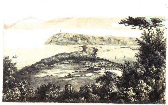 Early illustration (Lithograph) of the Point, Port Natal and Bluff, 1855, Durban. Sketched from Captain Gardiner's station