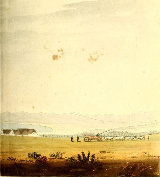 ox wagon, cape, burchell, travels in the interior of sa, 1811